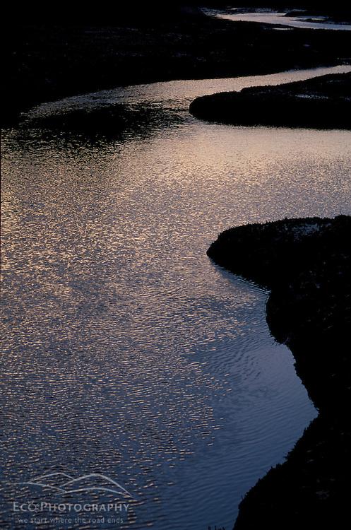 Tidal Estuary. Great Bay. March.  Crommet Creek, Durham, NH