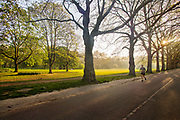 Lone morning jogger keeping fit despite the lockdown in an empty Green Park on 16th April 2020 in London, United Kingdom. Normally crowded with people London is like a ghost town as workers stay home under lockdown during the Coronavirus pandemic.