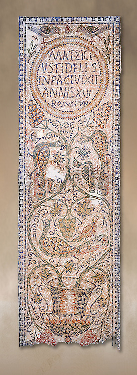 The Christian memorial funerary mosaic of Matziceus, a Libyan, with the inscription reading: 'the faithful Matziceus lived in peace for 42 years, rested (died) on the fifteenth of the calends of June'.<br /> <br /> The panel is decorated with vines which grow out of a cantharus, a Greek style drinking cup, which represents the fountain of life.<br /> <br /> 5th century Eastern Byzantine Roman mosaic from the Parish church of Demna, left AisleBardo Museum, Tunis, Tunisia .<br /> <br /> If you prefer to buy from our ALAMY PHOTO LIBRARY  Collection visit : https://www.alamy.com/portfolio/paul-williams-funkystock/roman-mosaic.html - Type -   Bardo    - into the LOWER SEARCH WITHIN GALLERY box. Refine search by adding background colour, place, museum etc<br /> <br /> Visit our ROMAN MOSAIC PHOTO COLLECTIONS for more photos to download  as wall art prints https://funkystock.photoshelter.com/gallery-collection/Roman-Mosaics-Art-Pictures-Images/C0000LcfNel7FpLI