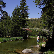 A hiker pauses along the Tuolumne River in Yosemite National Park.