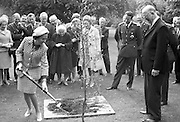 Belgian Royal Visit - King Baudouin and Queen Fabiola plant a tree in  the grounds of Áras an Uachtarain, helped by President Eamon De Valera.<br /> 17.05.1968
