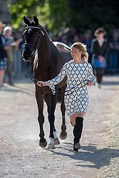 Johnstone Kirsty (GBR) - Opposition Detective<br /> CCI4* - Mitsubishi Motors Badminton Horse Trials 2016<br /> © Hippo Foto - Jon Stroud<br /> 06/05/16