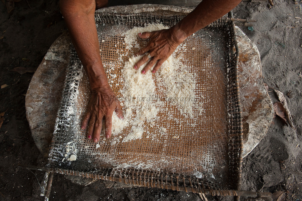 Cassava Flour being sifted into Podocnemis expansa (Podocnemis expansa)<br /> Rewa Village<br /> Rupununi<br /> GUYANA<br /> South America