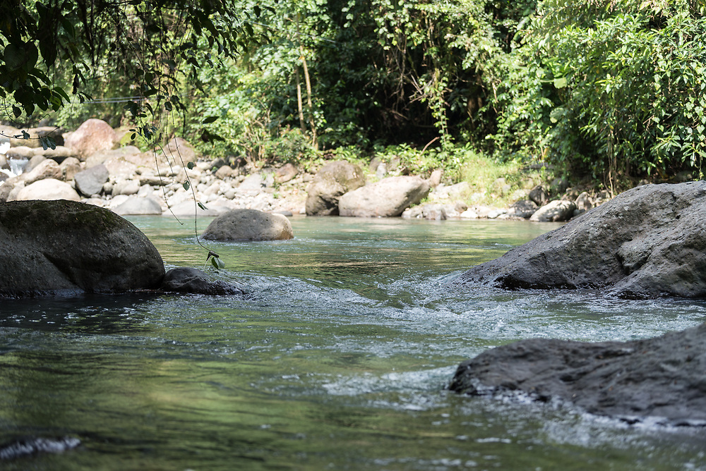 16 November 2018, San José de León, Mutatá, Antioquia, Colombia: The area of San José de León is rich in clean water - a great asset, but also a threat to the community, as mining companies and other interests may enter the scene to exploit or damage the natural resource. Following the 2016 peace treaty between FARC and the Colombian government, a group of ex-combatant families have purchased and now cultivate 36 hectares of land in the territory of San José de León, municipality of Mutatá in Antioquia, Colombia. A group of 27 families first purchased the lot of land in San José de León, moving in from nearby Córdoba to settle alongside the 50-or-so families of farmers already living in the area. Today, 50 ex-combatant families live in the emerging community, which hosts a small restaurant, various committees for community organization and development, and which cultivates the land through agriculture, poultry and fish farming. Though the community has come a long way, many challenges remain on the way towards peace and reconciliation. The two-year-old community, which does not yet have a name of its own, is located in the territory of San José de León in Urabá, northwest Colombia, a strategically important corridor for trade into Central America, with resulting drug trafficking and arms trade still keeping armed groups active in the area. Many ex-combatants face trauma and insecurity, and a lack of fulfilment by the Colombian government in transition of land ownership to FARC members makes the situation delicate. Through the project De la Guerra a la Paz ('From War to Peace'), the Evangelical Lutheran Church of Colombia accompanies three communities in the Antioquia region, offering support both to ex-combatants and to the communities they now live alongside, as they reintegrate into society. Supporting a total of more than 300 families, the project seeks to alleviate the risk of re-victimization, or relapse into violent conflict.