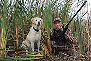 Waterfowler with his Yellow Lab on a Manitoba Diver Hunt