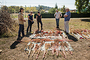 Researchers, chefs, and breeders discuss seed saving at Wild Garden Seed farm in Philomath, OR.