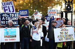 © Licensed to London News Pictures. 14/11/2018. London, UK. Pro-Brexit protesters outside Downing Street as Cabinet prepares to meet to discuss the Brexit deal. Photo credit: Rob Pinney/LNP