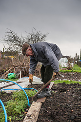 An elderly man spends some of his retirement working on his allotment in rural Essex. *MODEL RELEASED*