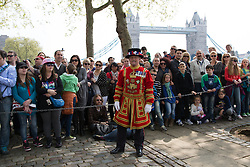 © Licensed to London News Pictures. 21/04/2014. London, UK. Yeoman Warder, Froggatt Stephen holds back the crowd as a 62 Gun Salute is fired by members of the Honourable Artillery Company (HAC) in honour of Her Majesty the Queen's 88th birthday today, 21st April 2014 at the Tower of London in front of Tower Bridge in London.. Photo credit : Vickie Flores/LNP