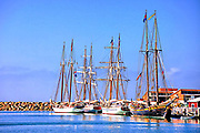 Historic Tall Ships at Dana Point wharf