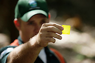 Matthew Paul, senior forester with the Department of Environmental Conservation Division of Lands and Forests, uses a basal area prism in one of the areas where timber will be harvested in the Vernooy Kill State Forest in the Town of Wawarsing on Monday, Sept. 14, 2009. The prism is used to determine tree spacing.