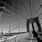 Brooklyn bridge cables, New York, United States (March 2005)