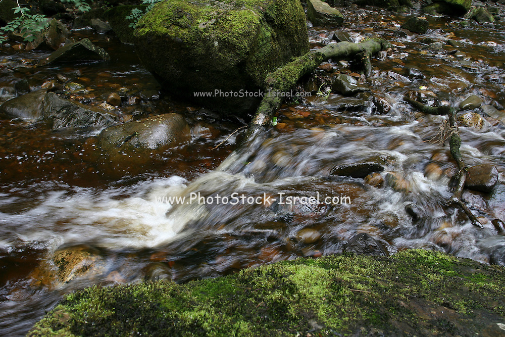 UK, Wales, Monmouthshire, Brecon Beacons National Park