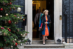 © Licensed to London News Pictures. 05/12/2017. London, UK. Leader of the House of Commons Andrea Leadsom leaves 10 Downing Street after the weekly Cabinet meeting. Photo credit: Rob Pinney/LNP