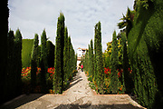 The Alhambra Palace and fortress complex located in Granada, Andalucia, Spain. Gardens in the Generalife area. This area was built for the Granadian monarchs to escape their official routine.