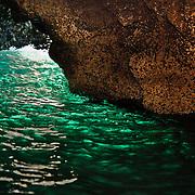 Volcanic sea caves honeycomb the shoreline of Santa Cruz Island, Channel Islands National Park, CA..Green Room inside Scorpiuon Rock.