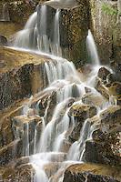 detail of a small waterfall in Stevens Canyon, Mount Rainier National Park, Washington, USA