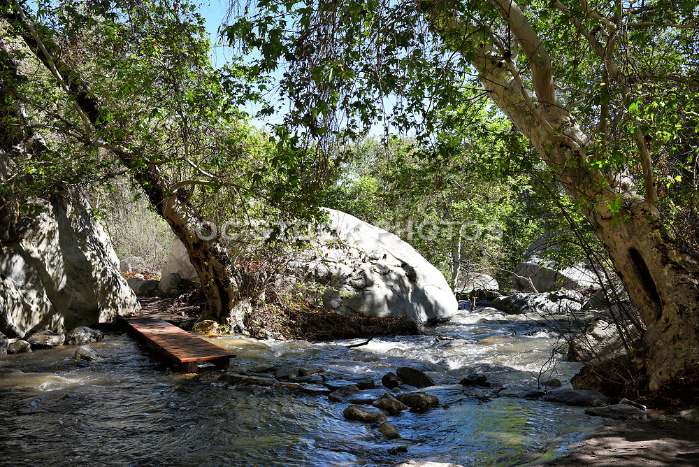 Tahquitz Canyon Creek in Palm Springs