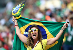 A Brazil fan in the stands shows her support