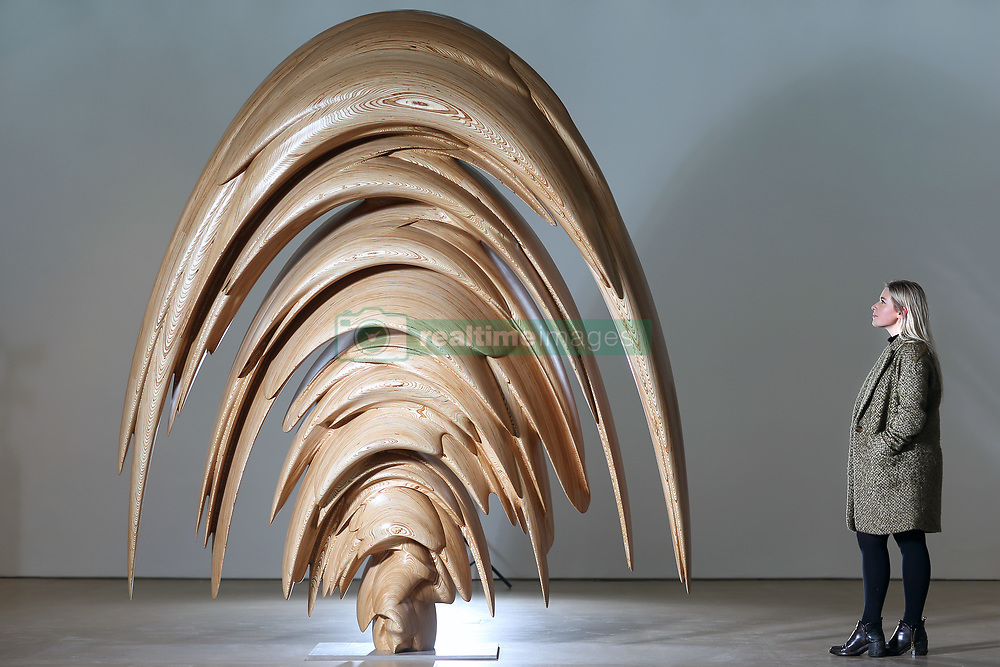 March 2, 2017 - Wakefield, Yorkshire, UK - MILLIE CARROLL looks over Tony Cragg's wood sculpture Spring at Yorkshire Sculpture Park today. Tony Cragg's largest UK exhibition opens today at the Yorkshire Sculpture park, A Rare Category of Objects, the exhibition features more than 170 sculptures & works on paper drawn from nearly five decades of Cragg's practice, the exhibition demonstrates the artist's pioneering & continued mastery of materials. (Credit Image: © Andrew Mccaren/London News Pictures via ZUMA Wire)