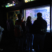 A family of visitors to Washington DC's National Aquarium inspect one of the exhibits. The National Aquarium is in the basement of the Department of Commerce Building, where it has been housed since 1932. Much smaller and less well known than its affiliated facility in Baltimore, Washington's National Aquarium consists of a series of tanks illustrated various types of marine environments, with special emphasis on the many marine sanctuaries in U.S. marine territory.