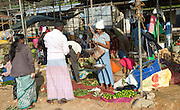 Fruit and vegetable market in the town of Haputale, Badulla District, Uva Province, Sri Lanka, Asia