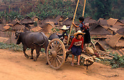 Akha villagers return home after a day in the fields. Chiang Mai Province