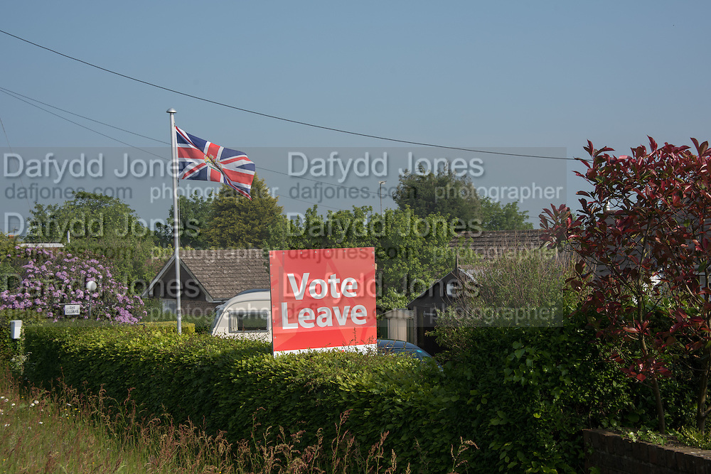 Vote Leave, NEAR, Heathfield Agricultural show. little tottingworth farm, broad oak, 28 May 2016