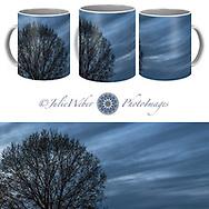 Coffee Mug Showcase   74 - Shop here: https://2-julie-weber.pixels.com/products/twilght-delight-julie-weber-coffee-mug.html