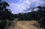 LOGGING ROAD, MALAYSIA. Sarawak, Borneo, South East Asia. Tropical rainforest and one of the world's richest, oldest eco-systems, flora and fauna, under threat from development, logging and deforestation. Home to indigenous Dayak native tribal peoples, farming by slash and burn cultivation, fishing and hunting wild boar. Home to the Penan, traditional nomadic hunter-gatherers, of whom only one thousand survive, eating roots, and hunting wild animals with blowpipes. Animists, Christians, they still practice traditional medicine from herbs and plants. Native people have mounted protests and blockades against logging concessions, many have been arrested and imprisoned.