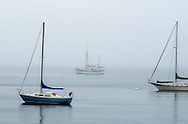 Three sailboats at anchor on a very foggy day, in Rockport Harbor, Midcoast Maine.