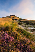 A heather lined path leading up to Higger Tor's summit. Captured at dawn. July in Derbyshire's Peak District. England, UK. 2014
