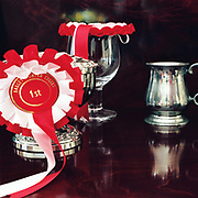 Horse riding trophies and rosettes from Bagley Hunter Trials on display in the dining room of Warren Farm, Simonsbath, Somerset, UK
