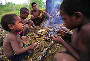 """Dani children unwrap their roasted """"bug packages"""", a collection of twenty or so stink bugs wrapped in leaves and set on the edge of a fire to roast as a small snack, Soroba, Baliem Valley, Irian Jaya, Indonesia. The kids also roast spiders, or mulikaks, on the glowing embers and eat them. (Man Eating Bugs page 78 Bottom)"""