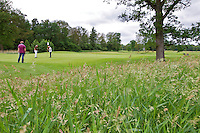 ESBEEK - Hole 5. Midden-Brabant Golfbaan. COPYRIGHT KOEN SUYK