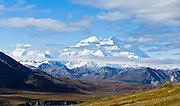 """Denali (formerly known as Mount McKinley) rises to 20,310 feet elevation (6191 m) along Denali National Park Road near Eielson Visitor Center, Alaska, USA. Denali is the highest mountain peak in North America, and measured from base to peak, it is earth's tallest mountain on land. Denali is only visible 1 out of 3 days. Rain falls as light showers or drizzle for half of summer days. The earliest shuttle bus doesn't reach Denali views until mid morning. The least cloudy time is early morning, which suggests overnight tenting at Wonder Lake to best see the mountain. Denali is a granitic pluton uplifted by tectonic pressure while erosion has simultaneously stripped away the softer sedimentary rock above and around it. The native Athabaskan name """"Denali"""" replaced """"Mount McKinley"""" in 2015. Published in """"Light Travel: Photography on the Go"""" by Tom Dempsey 2009, 2010."""