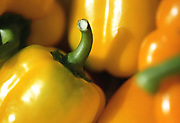 Close up selective focus photograph of Yellow Bell peppers