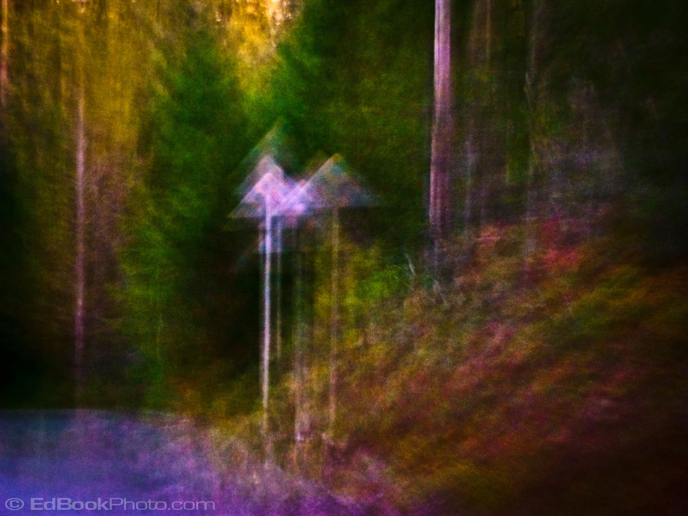 an abstract image of a sign seen multiple times pointing upward along a road in a forest.