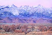Winter Sunrise in Owens Valley, Lone Pine, California