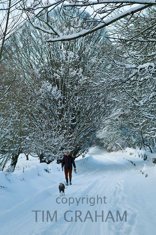 Man walking his dog in snow-covered  lane in Swinbrook, The Cotswolds