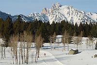 Nordic skate skiing at Jackson Hole Mountain Resort in Jackson Hole, Wyoming.