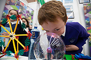 24/11/2019 repro free: Cathal Kennelly 9 from Gael SCoil Mhic Amhlaigh at the last day of the Galway Science and Technology Festival  at NUI Galway where over 20,000 people attended exhibition stands  from schools to Multinational Companies . Photo:Andrew Downes, xposure