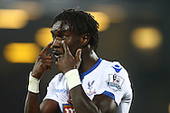 Pape Souare of Crystal Palace gestures as he questions the referee's assistant. Barclays Premier league match, Everton v Crystal Palace at Goodison Park in Liverpool, Merseyside on Monday 7th December 2015.<br /> pic by Chris Stading, Andrew Orchard sports photography.