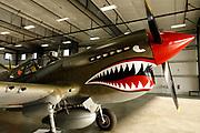 P-40E Warhawk of the Erickson Aircraft Collection.