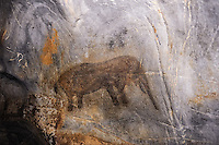 The Cango Caves are located at the foothills of the Swartberg range near the town of Oudtshoorn, South Africa. Ancient painting of an Elephant.