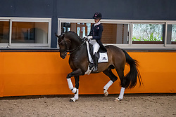 Van Liere Dinja, NED, Hermès<br /> Fotodag KWPN Hengstenkeuring 2021<br /> © Hippo Foto - Dirk Caremans<br /> 06/01/2021