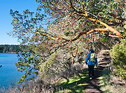 We hike a nice one-mile loop trail along Garrison Bay beneath a Pacific Madrone or Madrona (Arbutus menziesii) tree at English Camp in San Juan Island National Historic Park, Washington, USA. The Pig War 1859-1872 peacefully arbitrated the San Juan Islands into the territorial United States.