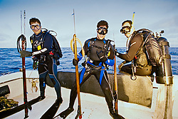 spearfishermen with powerheads or bang sticks, off Tampa, Florida, USA, Gulf of Mexico, Caribbean Sea,  Atlantic Ocean, Model Released - MR#: 000010, 000012, 000014