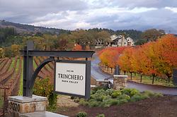 Stock photo Napa Valley wine country in California