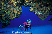 diver peers into a cavern in <br /> coral reef, Cozumel, Mexico, <br /> ( Caribbean Sea )  MR 140 -MR 142
